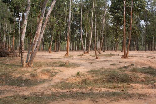 Shantitniketan