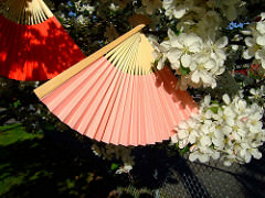 Beautiful, folding hand fans