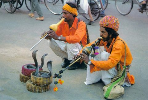 Snake charmers are a rare sight these days