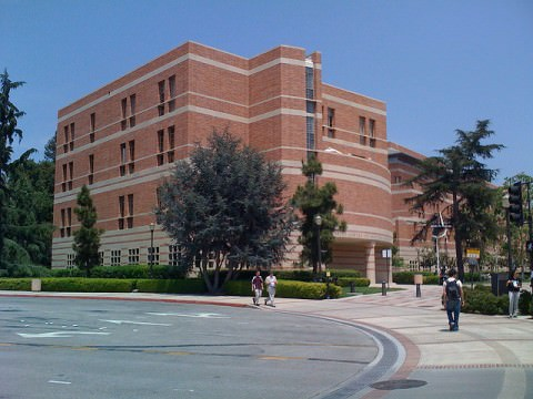 Anderson School of Management