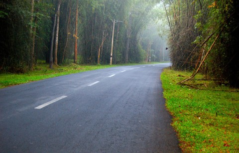 Roads in Wayanad